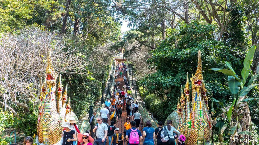 ChiangMai13